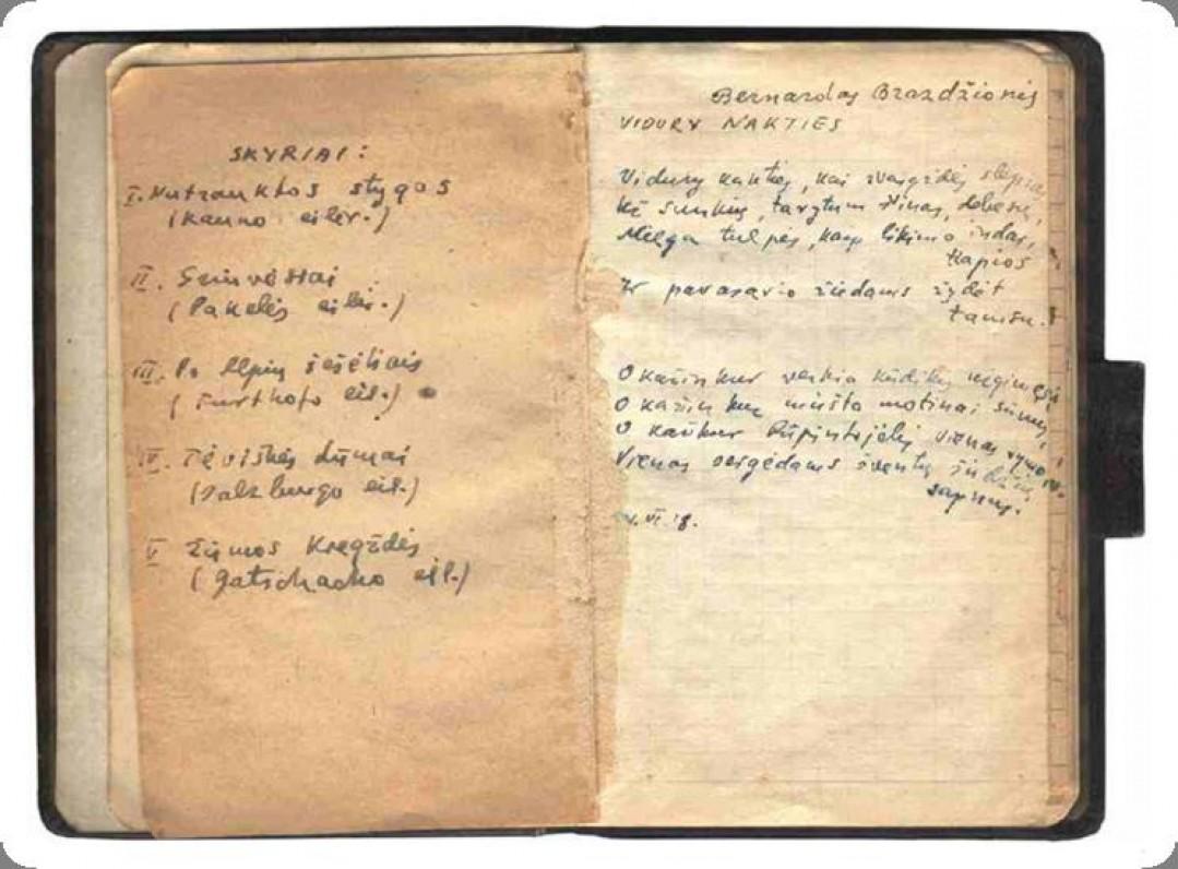 """Iš pirmosios rankraštinės knygelės """"Svetimi kalnai"""""""