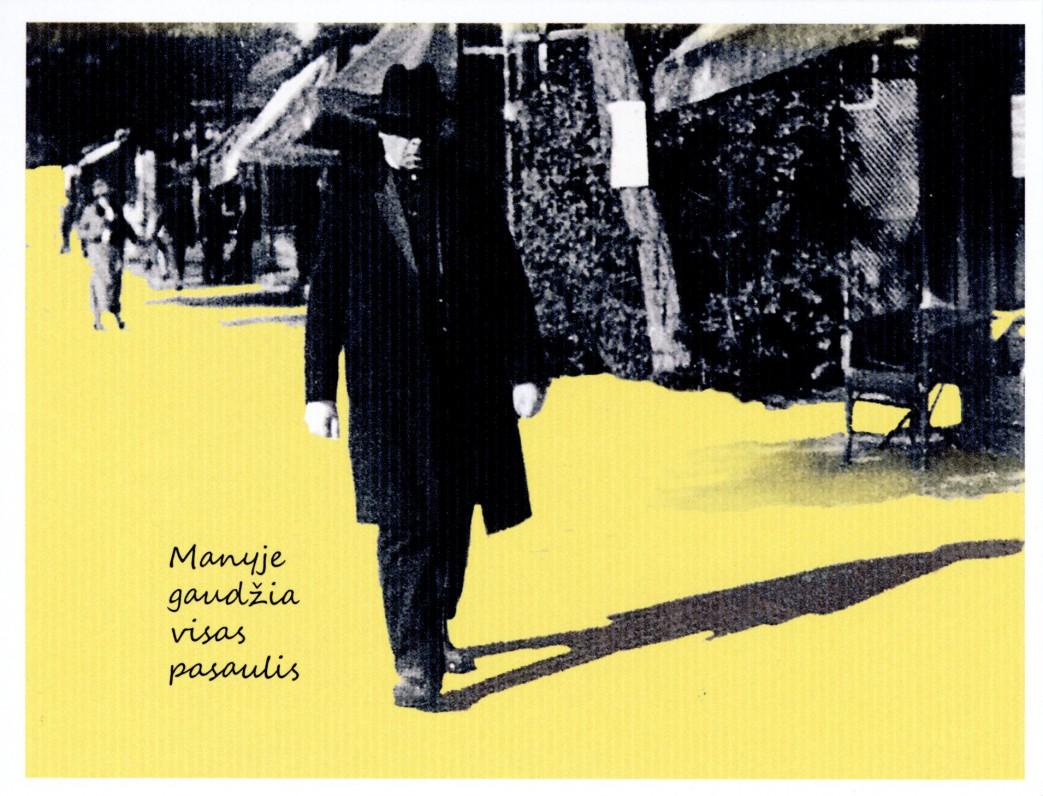 4. Poetas Maironis Vildungene
