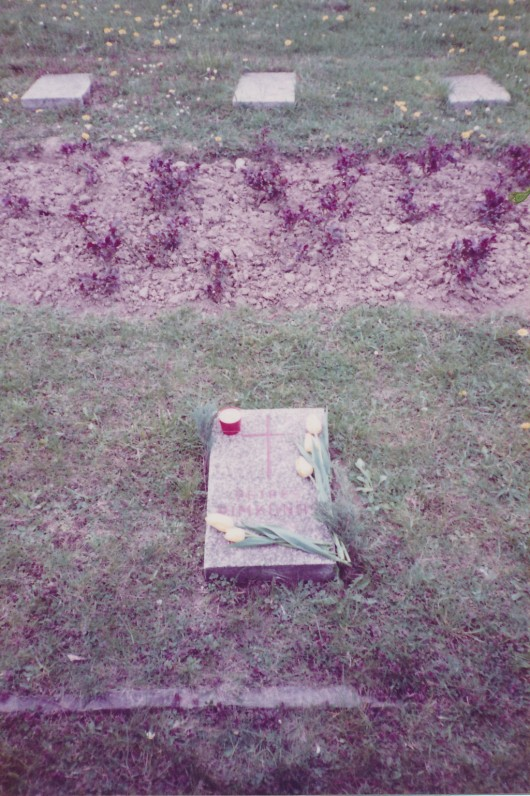 P. Rimkūno kapas. Viena, Austrija. 1990 m.
