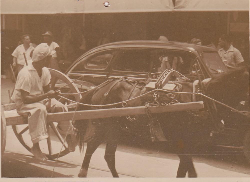 Arklio traukiamas vežimas miesto gatvėje. Brazilija, apie 1946–1950 m.