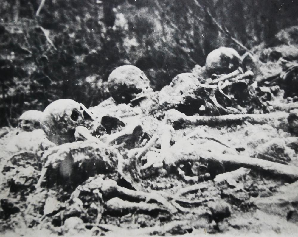 Aukų liekanos