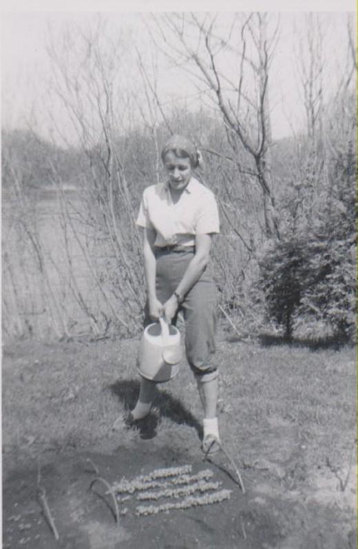 JAV, 1959 m.