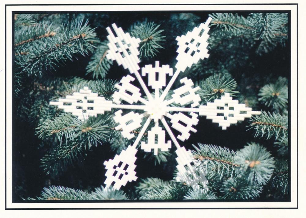 M. ir J. Gliaudų Kalėdų ir Naujųjų metų sveikinimas S. Santvarui. Čikaga, 1985 m. Ž. Valentinaitės nuotrauka