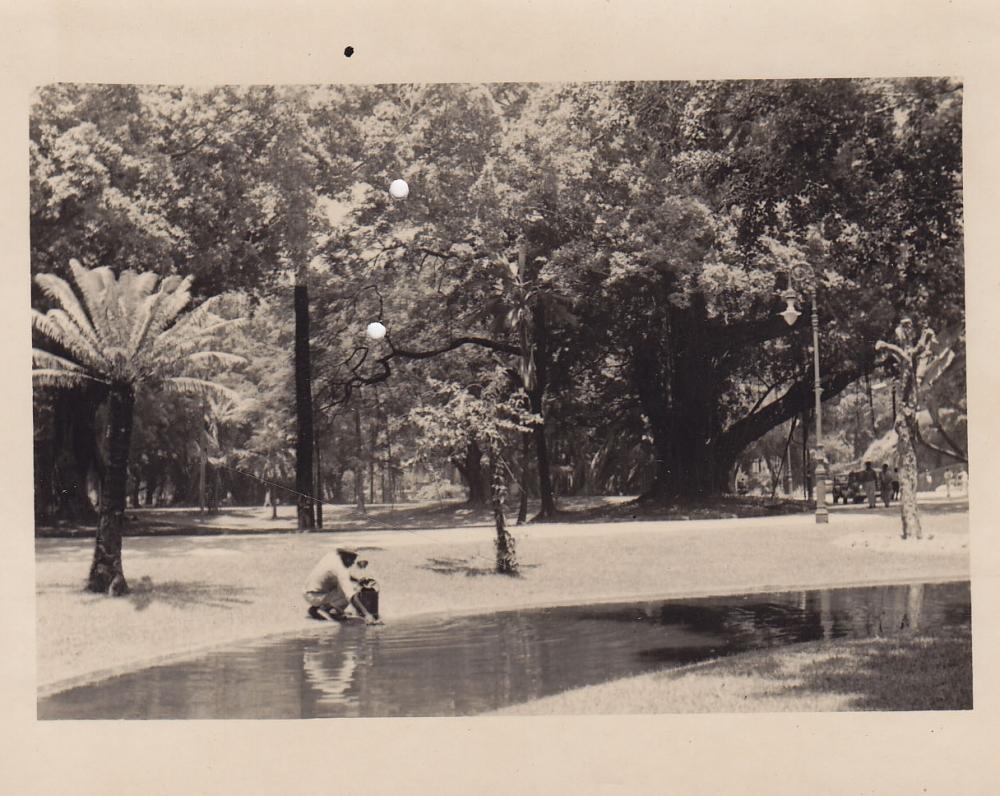 Parkas. Brazilija, apie 1946–1950 m.