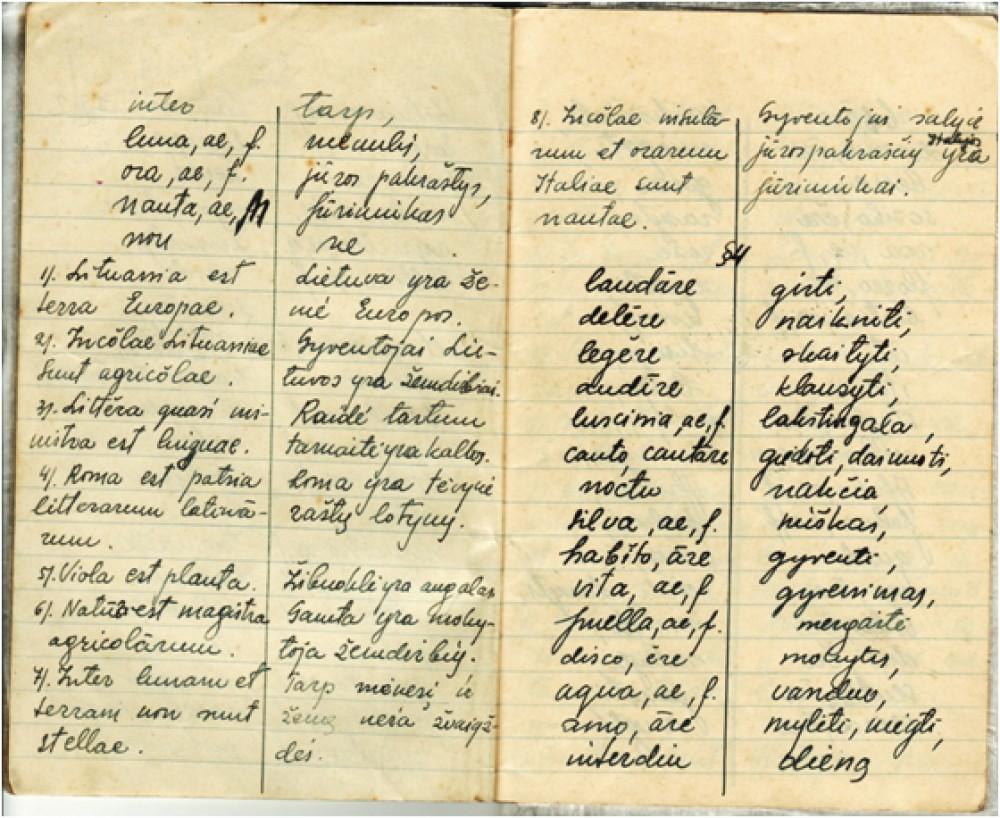 Vytauto Mačernio lotynų kalbos žodynėlis,