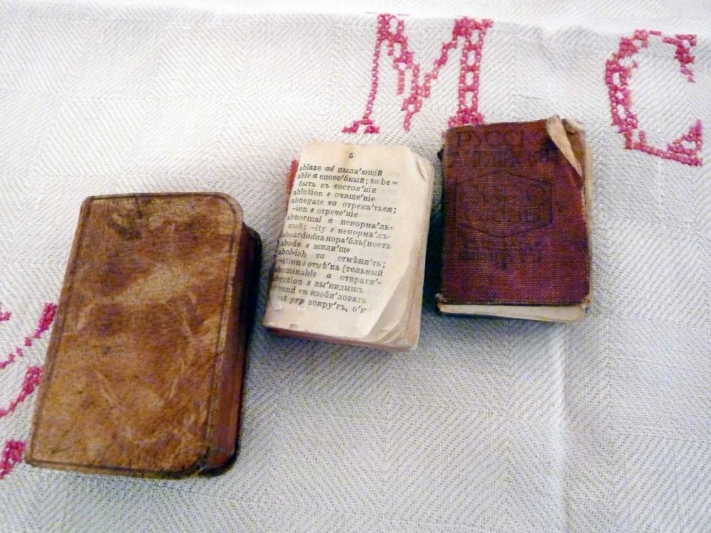 Vytauto Mačernio žodynėliai