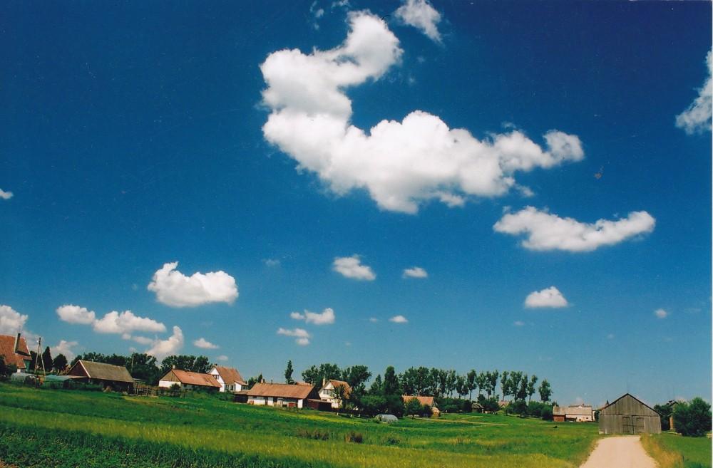 Gimtasis Gustaičių kaimas, Marijampolės r. 2005 m. Nuotrauka Z. Baltrušio