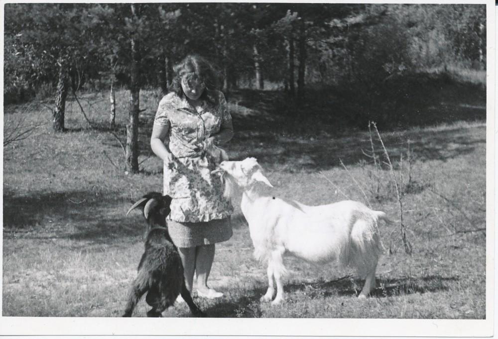 """J. Degutytė šeria ožkas. Antroje fotografijos pusėje poetė užrašiusi """"1967 m. ties Merkine"""""""