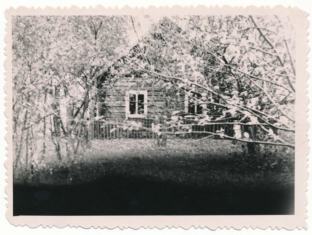 Poeto gimtieji namai, Nemeikščių kaimas