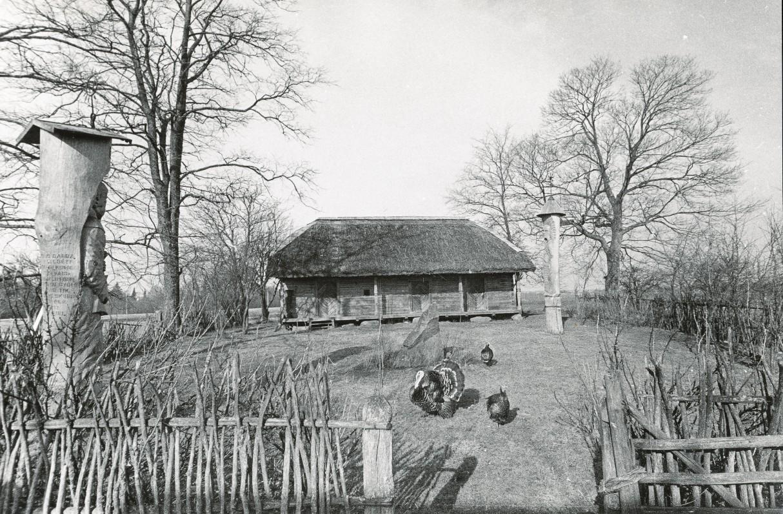 S. Daukanto gimtinė Kalviai. Nuotr. R. Rakausko.1986 m.