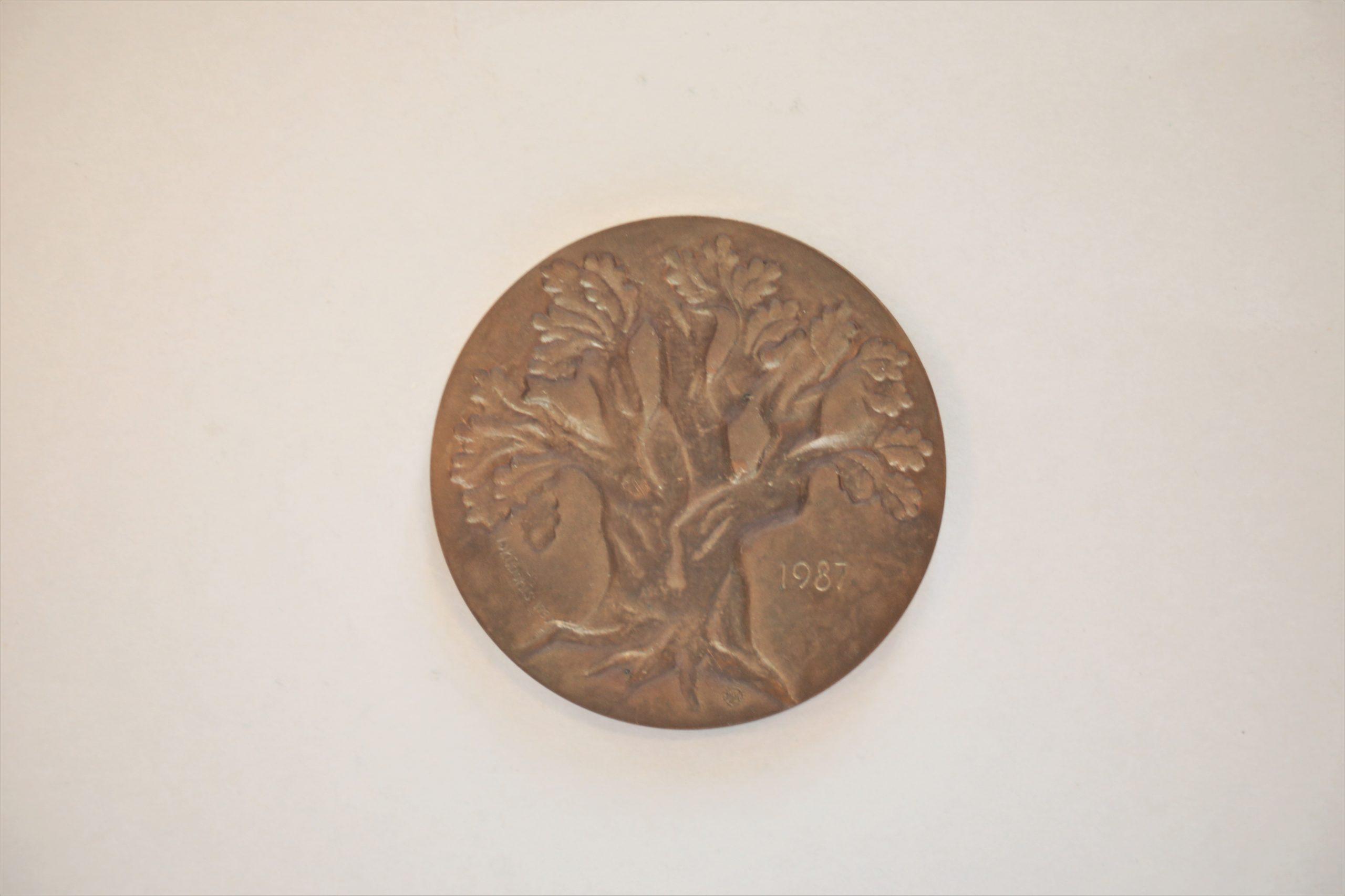 Medalis. Maironis. Reversas. Metalas. Dail. G. Jokūbonis